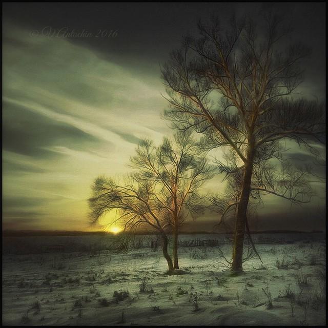 Winter.Evening.