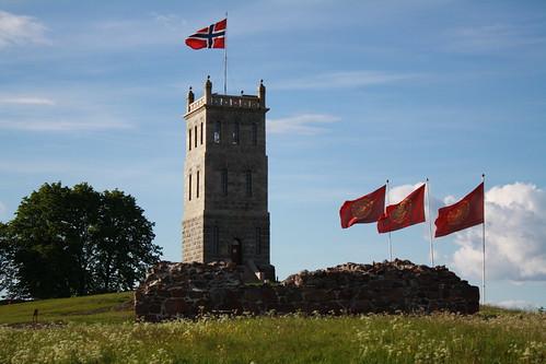 Slottsfjellet (12)