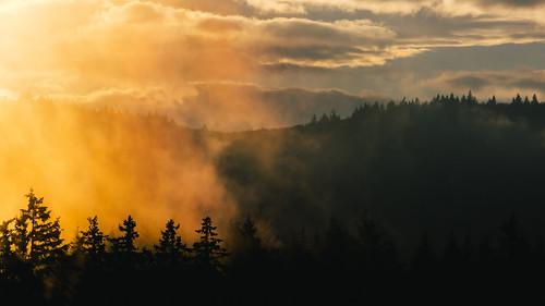 clouds sunset landscape pacificnorthwest nature scenic trees fog canoneos5dmarkiii canonef100400mmf4556lisusm johnwestrock washington