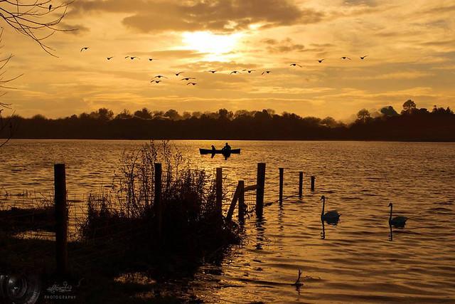 The Golden Lough