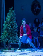Wed, 2014-11-12 16:20 - Christmas Tree