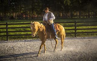 Paul Dietz and Golden Horse | by VBuckley.com