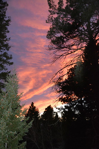 sunset conifercocolorado