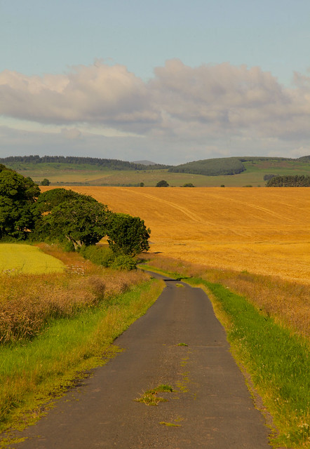 Northumberland B Road