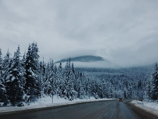 Oh winter!! I've missed you. | by doribig