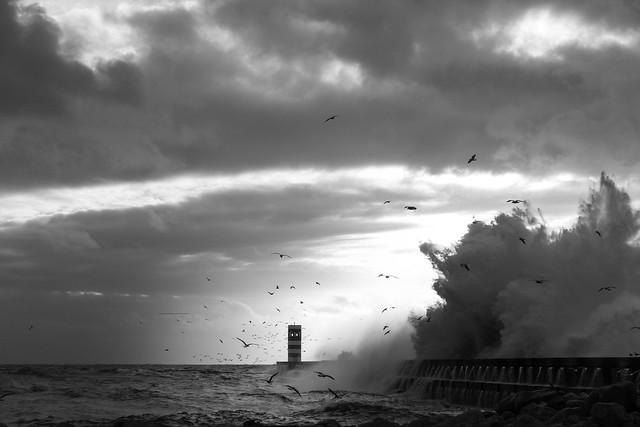 F7799 ~ Stormy weather