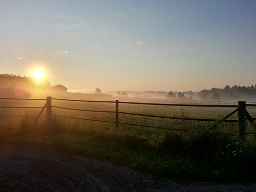 morning summer mist nature beautiful field misty fog sunrise fence suomi finland dawn countryside finnland farm country foggy finlandia フィンランド finlande finlândia finnország finlanda finlàndia финляндия finnishsummer finnlando فنلندا