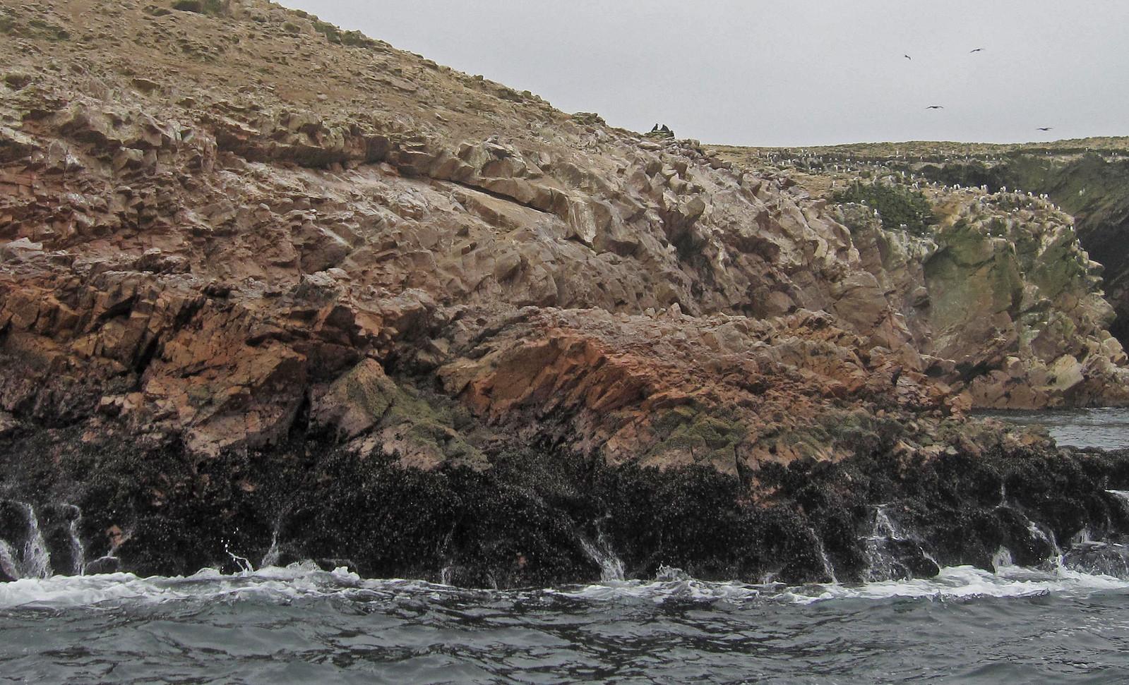 Islas Ballestas 04