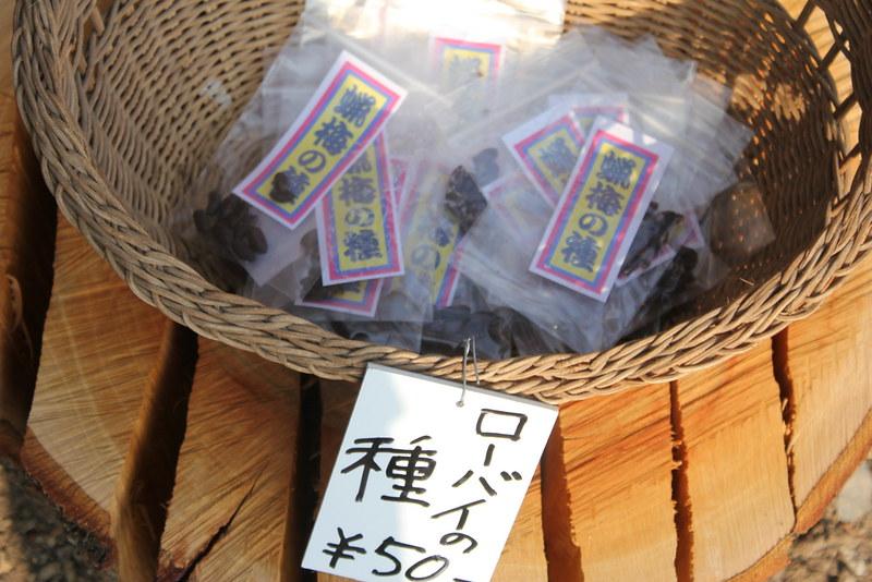 2014-02-01_00028_宝登山