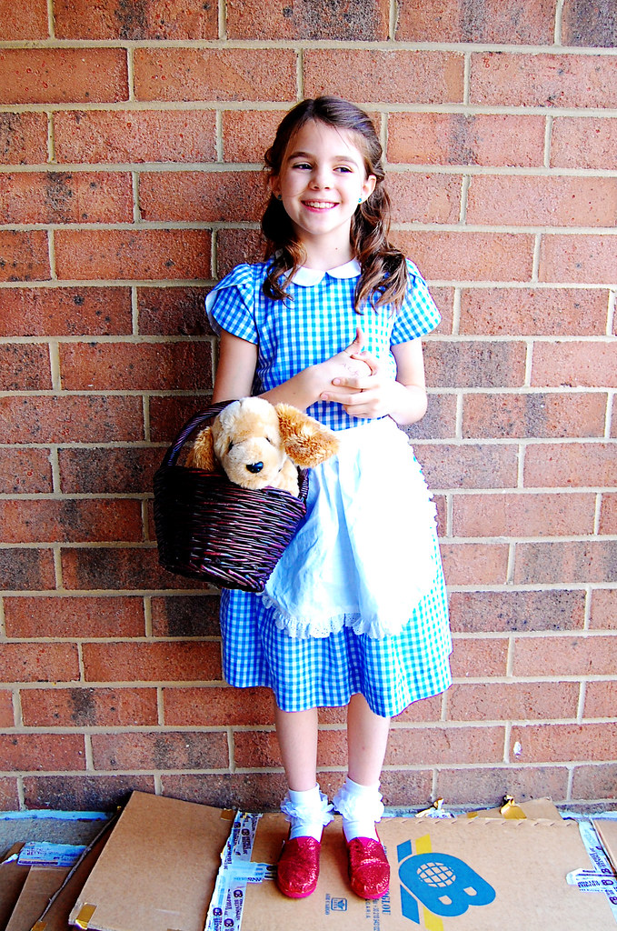 2a5b77d02dd Dorothy Fairy Tale Dress | Fairy Tale Dress by Oliver+S Size… | Flickr
