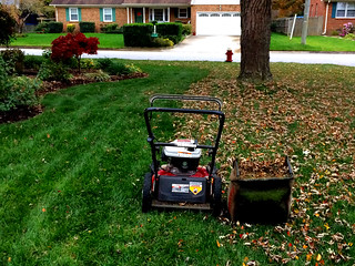 First Leaf Mowing of the Season | by byzantiumbooks