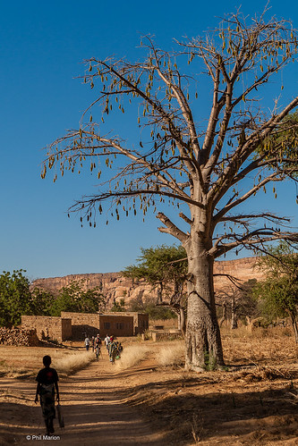 Small village on the Dogon Escarpment - Mali | by Phil Marion