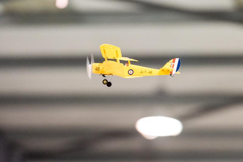 Rodney's biplane.
