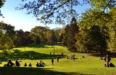 Central Park-Cedar Hill, 10.12.14