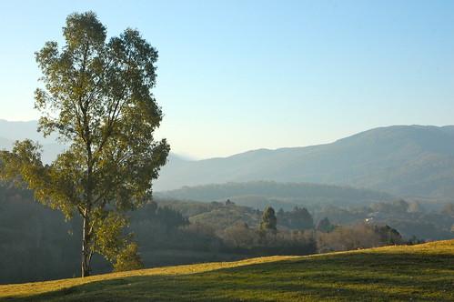 Views from Cerro San Javier, Tucumán, Argentina | by blueskylimit