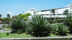 Faro Venustiano Carranza