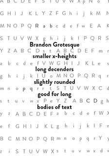 Brandon Grotesque Type Specimen | Anatomy information