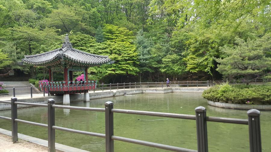 Nguyen, Anna; South Korea - Episode 14 (5)