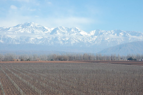 Wine Tasting at Catena Zapata in Luján de Cuyo, Mendoza, Argentina | by blueskylimit