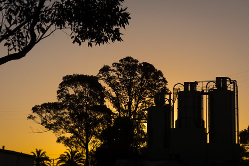 trees sunset sun silhouette industrial dusk sony sigma australia silo newsouthwales goldenlight wauchope lerps sonyalphadslr sigma1850mmf28exdcmacro sonyalphaa77v daniellerps