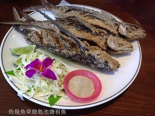 IMG_7671炸飛魚池塘有魚_001 | by gabriel wang