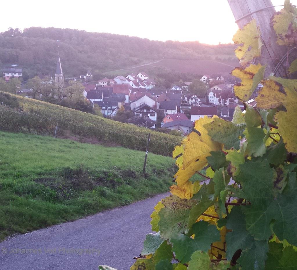Wanderung Auf Dem Höhenweg Und Durchs: Wanderung Auf Dem Panoramaweg Taubertal Und E8
