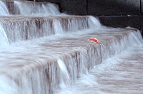 autumn red orange white fall water wall flow flickr tennessee steps rush streams chattanoogatn tennesseeaquarium lonelyleaf