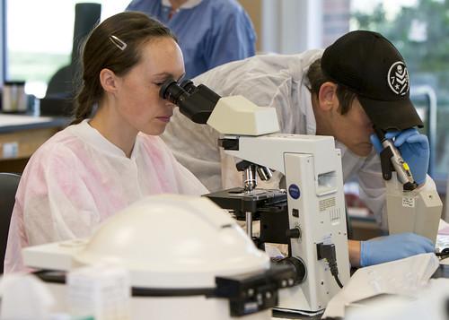 Medical Laboratory students