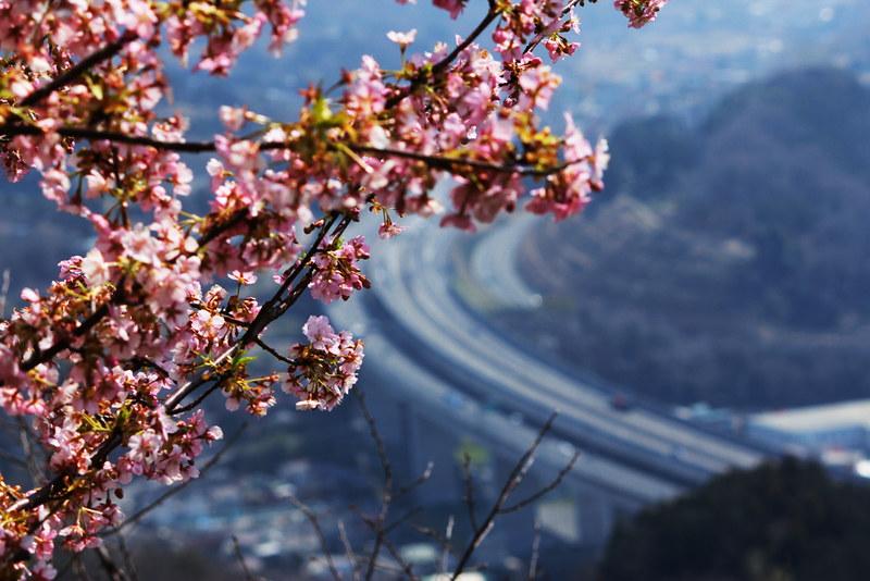 2014-03-16_00095_高松山