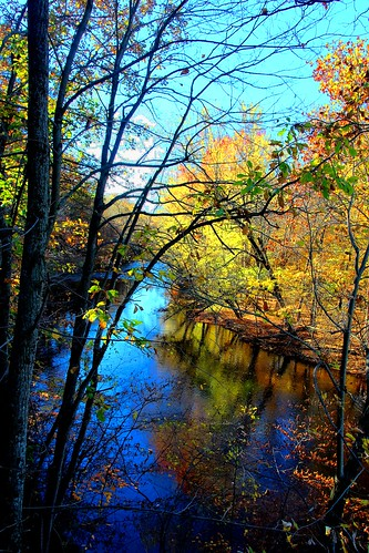 100v10f nct trail whitepinetrail autumn fall october hiking michigan usa light shadow reflection canont5i creation nature 18250mmf3563dcosmacrohsm wonderfulworld beautifulearth 2016 purelynature colors tones dslr personalbest