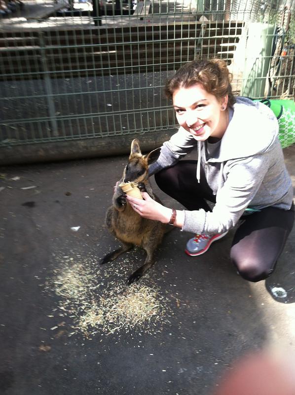 Jugan, Ashleigh; Sydney, Australia - The End of Classes - Featherdale Zoo