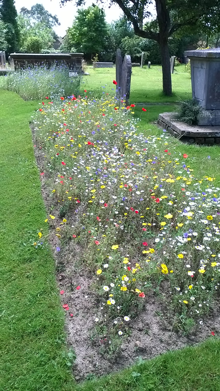 Churchyard West Hoathly Flowerbeds amongst the gravestones.