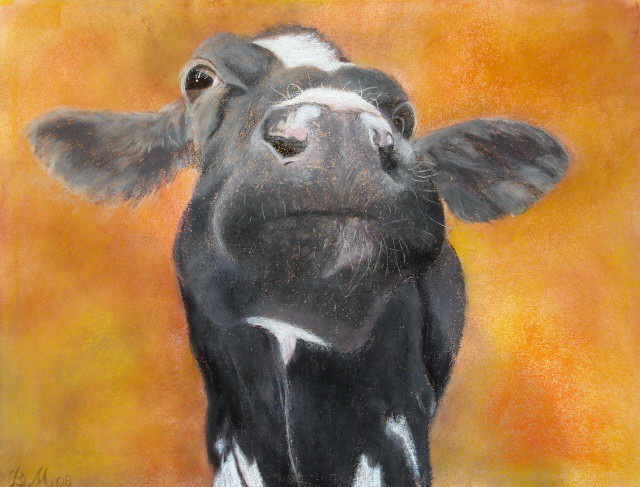 Gekke koe, Daniëlle Broekhuizen-Mazzola