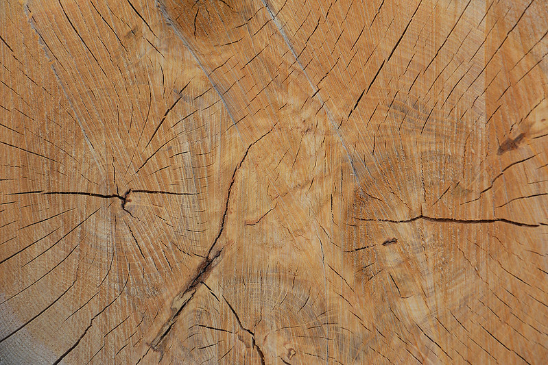 Wood Texture #9