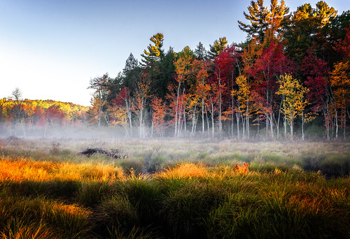 autumn trees fall digital sunrise us unitedstates connecticut waterfalls marsh photographicart granby bog wetland beaverlodge naturephotographer endersfalls landscapephotographer endersstateforest connecticutphotographer