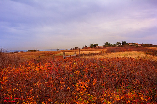 sakonnet rhodeisland nature landscapes landscape beachscenes autumn winter outdoors hiking weather cool dry cloudy field outdoor sky