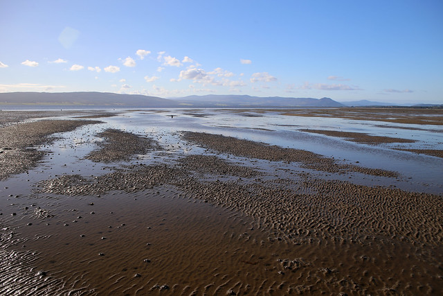 The north bank of the Dornoch Firth