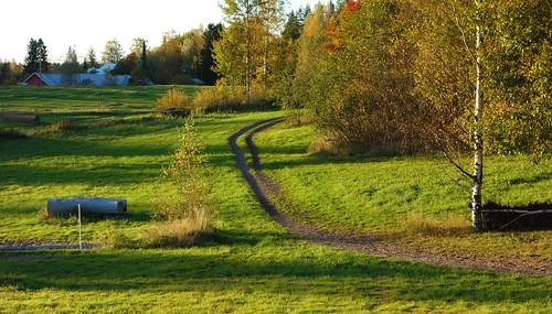 autumn trees building fall sunshine finland landscape evening shadows path farm peaceful serene birch kerava greenfields ridingpath thebrothersfour sakarip