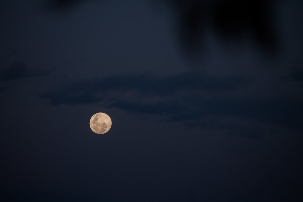 Full moon *