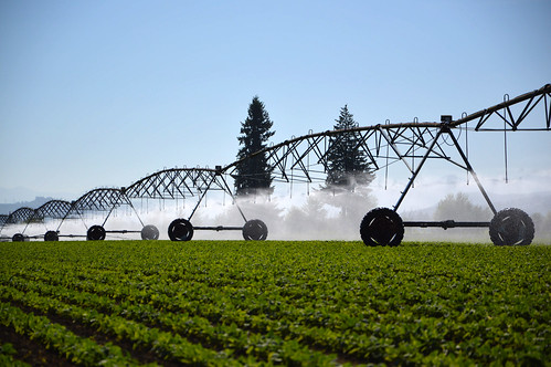 Oregon farmers help conserve groundwater with efficient irrigation | by NRCS Oregon