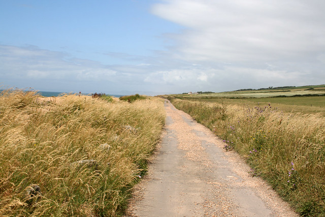 Coast road between Abbotsbury and West Bexington