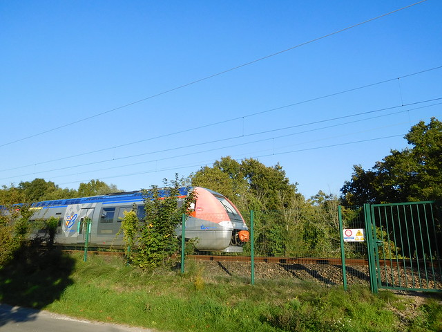 TER Bourgogne