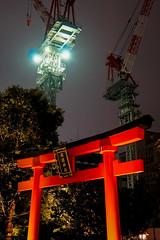 Nihonbashi Night