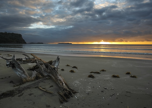 ocean park sea newzealand beach water clouds sunrise landscape coast seaside cloudy shoreline auckland driftwood shore nz regional waiwera waterscape wenderholm lisaridings fantommst