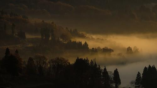 morning mist nature japan fog sunrise landscape sony sigma riceterrace ilce600