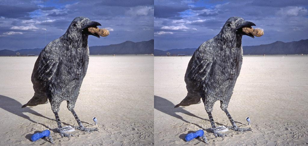 Burning Man 2016 - Crows  3D  Cross-View