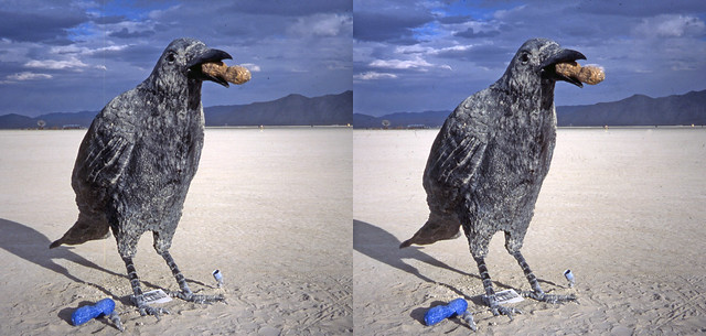 Burning Man 2016 - Crows  3D  Cross-View