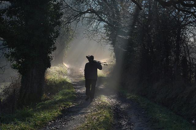 Morning birding  ...