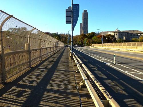 November Shadows Fence