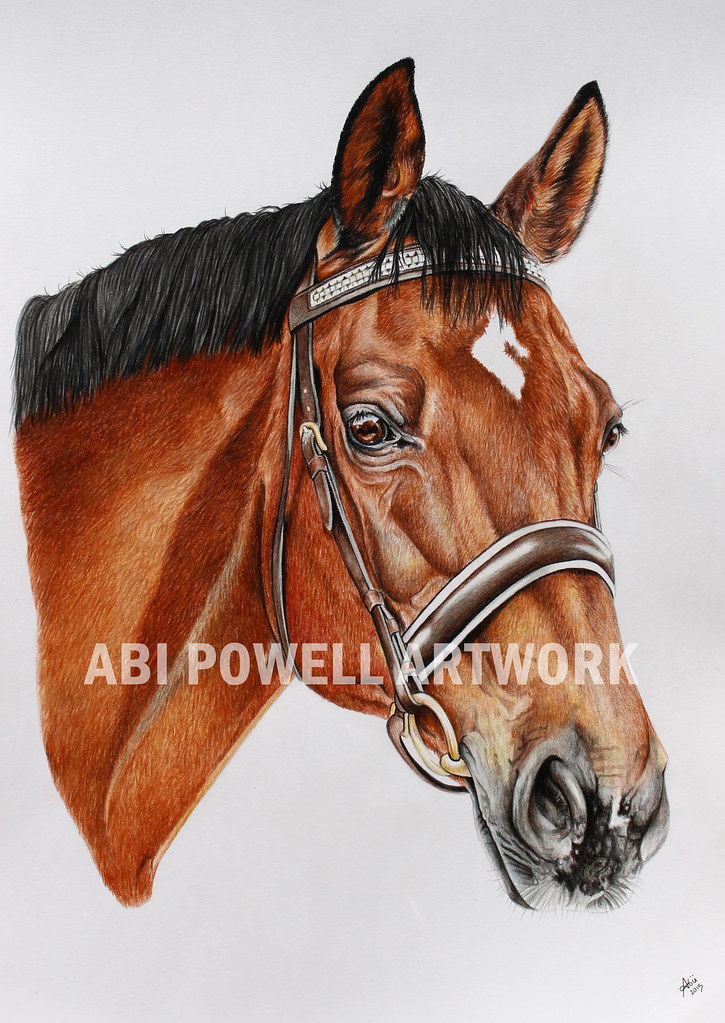 A3 Commission Colored Pencil Drawing Olaf A3 Colour Pencil